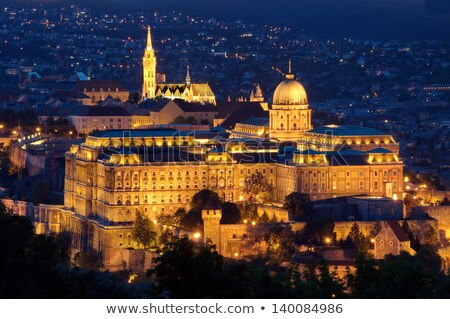 Beautiful view of historic Royal Palace in Budapest Stock photo © ilolab