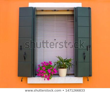 Venetian ferestre flori fereastră flori galbene culoare Imagine de stoc © deyangeorgiev