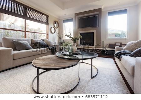 beautiful living room in white tones with fireplace stock photo © dashapetrenko