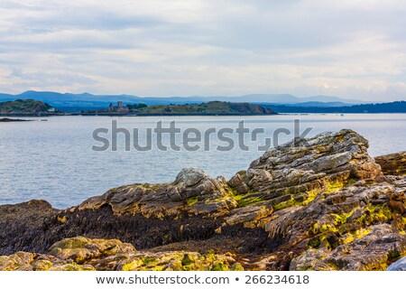 Stock photo: Black Sands beach, Aberdour, Scotland.