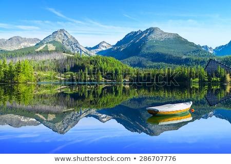 Berg meer Slowakije hemel water voorjaar Stockfoto © master1305
