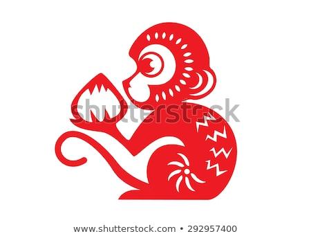 örömteli · majom · család · licit · majmok · játszik - stock fotó © adrenalina