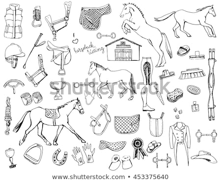 Doodle Horse Stock photo © netkov1