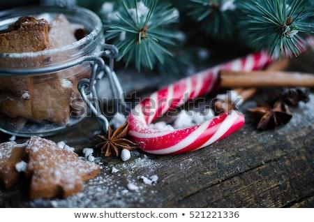 hortelã-pimenta · natal · doce · doce · decoração - foto stock © vlad_star