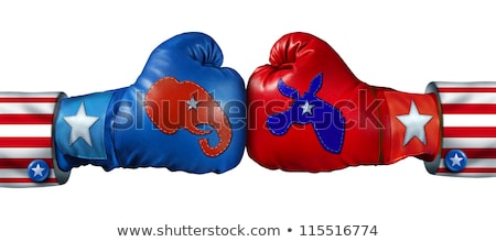Democratic American Election Fight Stock photo © Lightsource