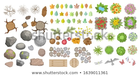 Log and bushes with flowers Stock photo © bluering