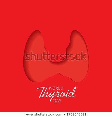 25 may world thyroid day stock photo © olena