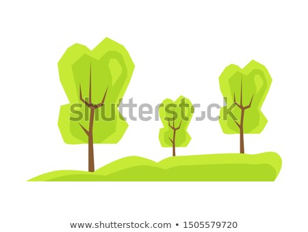 Tall Green Trees on Fresh Grass, Neat Park Meadow Stock photo © robuart