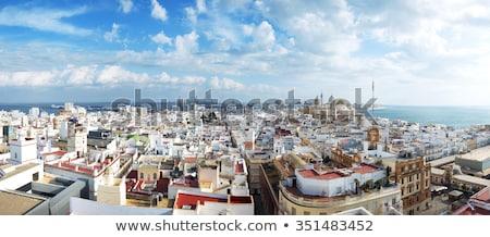 Aerial panorama of Cadiz Stock photo © benkrut