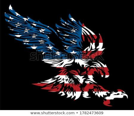 Amerikanische Flagge innerhalb Adler Maskottchen Symbol Illustration Stock foto © patrimonio