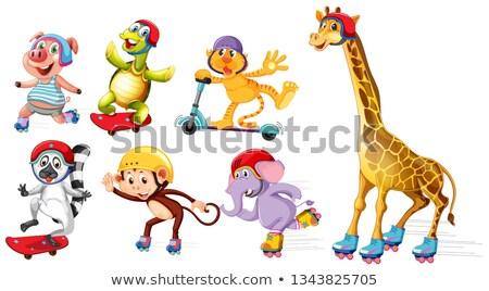 Giraffe playing roller skate Stock photo © colematt