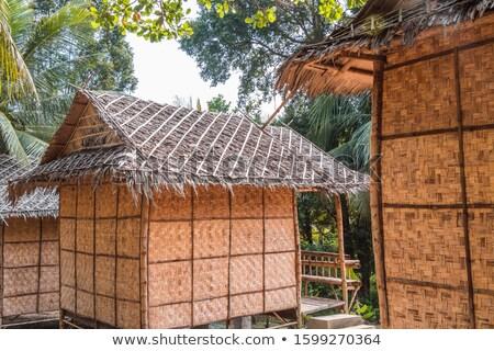 Bungalow boschi illustrazione casa home sfondo Foto d'archivio © colematt