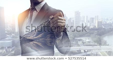 Financiar stock diagrama mixto los medios de comunicación negocios Foto stock © alexaldo