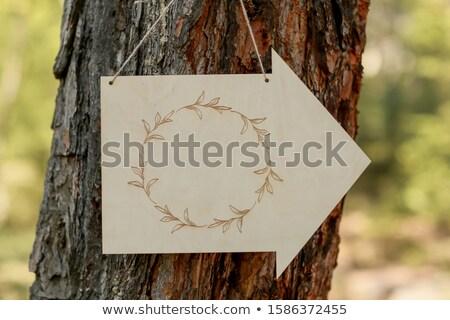 Felirat csatolva fa forma nyíl jelzés nyíl Stock fotó © ElenaBatkova