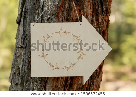 Assinar anexada árvore forma seta Foto stock © ElenaBatkova