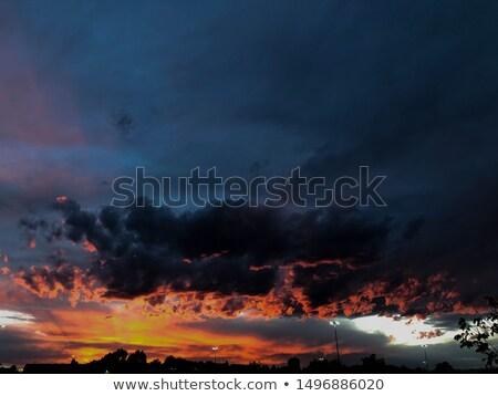 Baum · sunrise · schönen · african · See · natürlichen - stock foto © pkdinkar