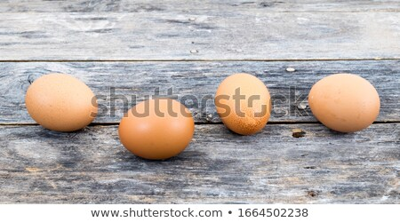 Country brown eggs lined up Stock photo © Balefire9