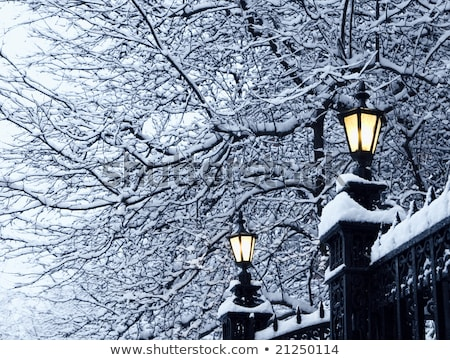 wrought-iron lamp in white back Stock photo © prill