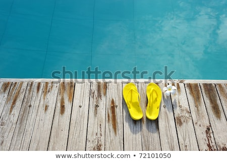 summer yellow and blue sandals shoe Stock photo © goce