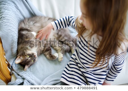 young girl with her cat stock photo © magann