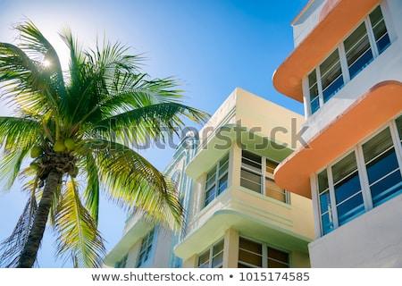 gyönyörű · Miami · tengerpart · pálmafák · népszerű · úticél - stock fotó © meinzahn