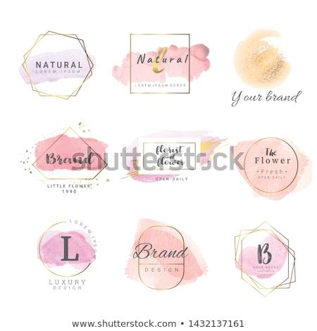 vektor · szépség · törődés · kozmetikai · termékek · sziluett - stock fotó © feabornset