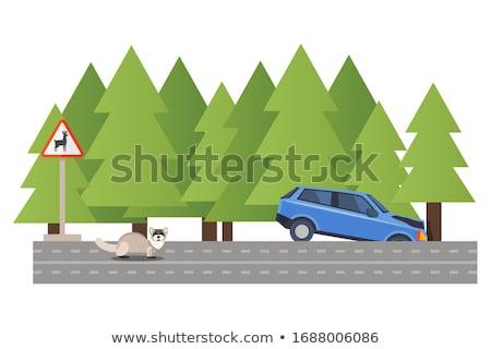 Road ditch Stock photo © Nneirda