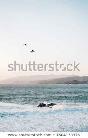 ilha · pôr · do · sol · backlight · San · Francisco · Califórnia · EUA - foto stock © yhelfman