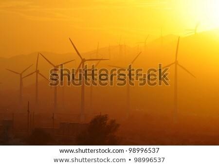 Pálma elektromos erő Kalifornia USA égbolt Stock fotó © Dreamframer