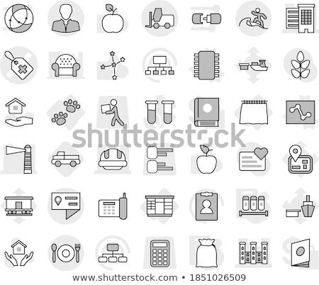 Astrología casa iconos diseno ilustración Foto stock © Linetale