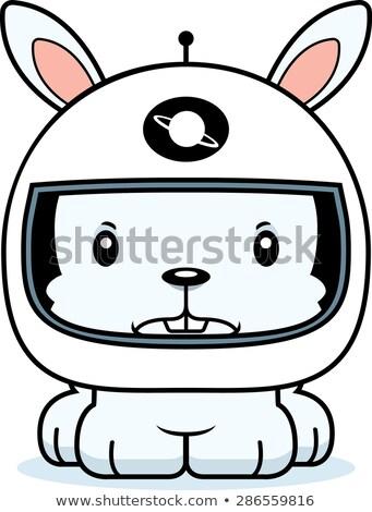Karikatür öfkeli astronot tavşan bakıyor tavşan Stok fotoğraf © cthoman