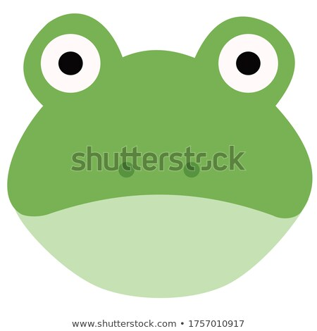 Frog flashcard Stock photo © colematt