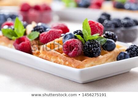 frutas · caliente · placa · naranja · de · sangre · arándano - foto stock © mpessaris