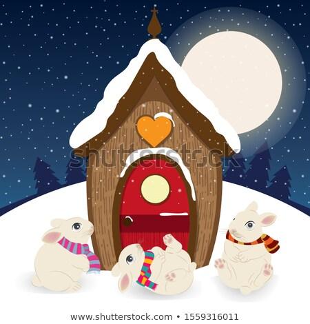 Sevimli Noel sahne cüce ev mutlu Stok fotoğraf © balasoiu