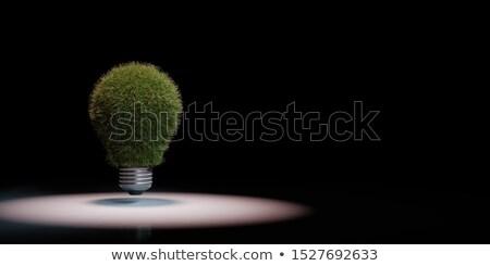 Herbeux ampoule noir espace de copie 3d illustration herbe Photo stock © make