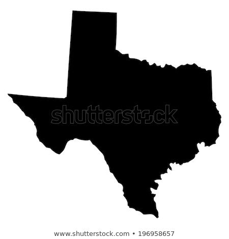 Textura Texas icono Internet marco bandera Foto stock © nezezon