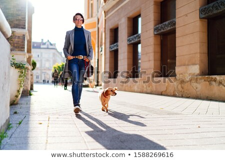 Woman walks with small dog Stock photo © vkstudio