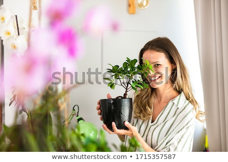 happy woman spraying houseplant with water at home Stock photo © dolgachov