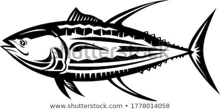 Tonijn kant retro zwart wit stijl illustratie Stockfoto © patrimonio