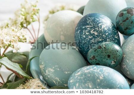 Ostern gefärbt Ei orange Serviette weiß Stock foto © RuslanOmega