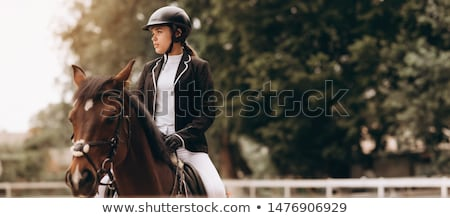 Equestrian stock photo © abdulsatarid