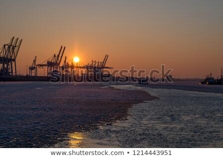 霧の · 日の出 · 川 · 桟橋 · 霧 · 距離 - ストックフォト © inganielsen