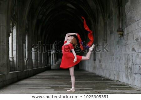 バレエダンサー ポーズ 教会 少女 ダンス 煙 ストックフォト © arturkurjan