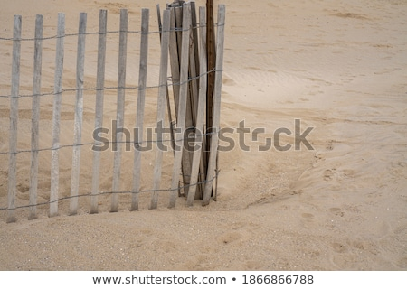 dunes are protwected by wooden fences stock photo © meinzahn