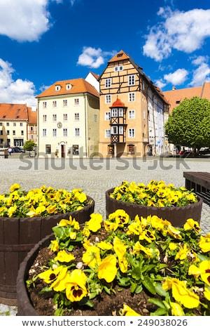 Kompleks średniowiecznej domów Czechy budynku architektury Zdjęcia stock © phbcz