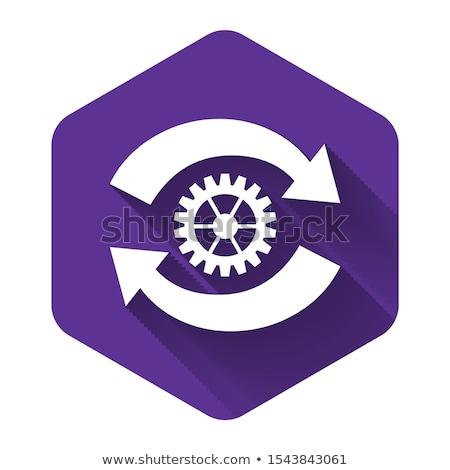 Beállítások körkörös vektor lila webes ikon gomb Stock fotó © rizwanali3d