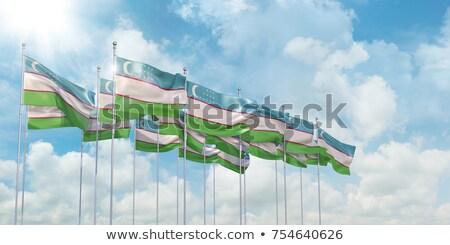 символ Узбекистан карта кнопки флаг белый Сток-фото © mayboro1964