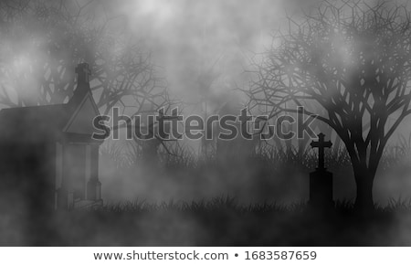 Zdjęcia stock: Mgły · krzyż · czarny · rano · przeciwmgielne · około