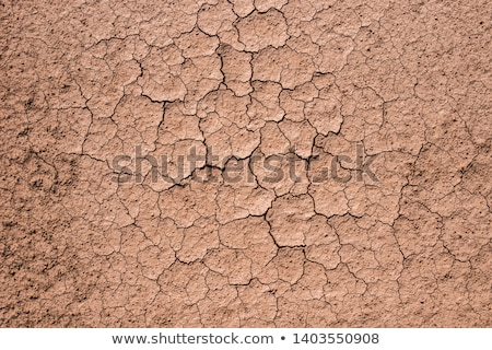 Dry Land Stock photo © fatalsweets