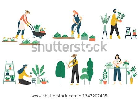 Kadın bitki el arabası ayakta toprak vektör Stok fotoğraf © RAStudio